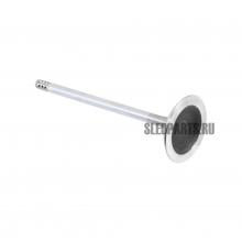 Впускной клапан BRP 420254359