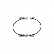 Уплотнительное кольцо BRP